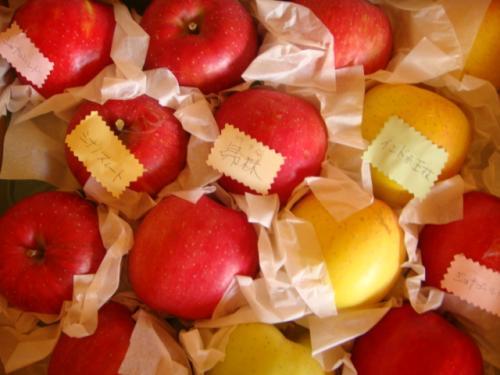 りんごだらけ