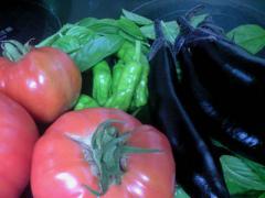 pasta_tomato01.jpg