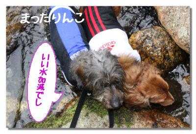 azumikouen8.jpg