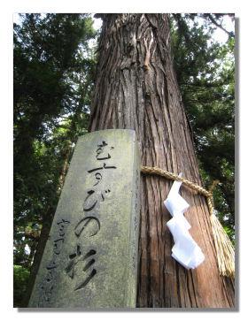 banji10.jpg