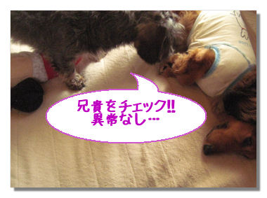 dejiichi7.jpg