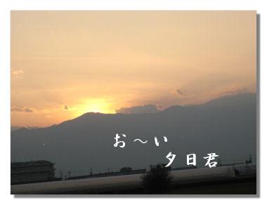 engei5.jpg