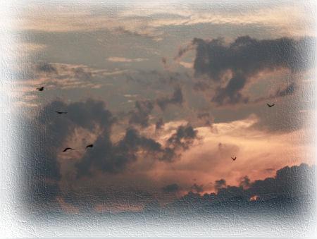skypard07139.jpg