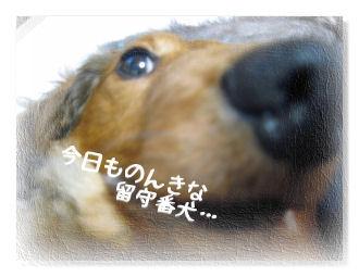 tokurayama07.jpg