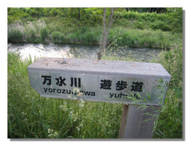 yorozui11.jpg