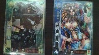 SR 姜維+R 呉夫人