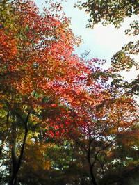 松雲山荘1