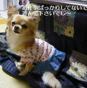 blog2012022103.jpg