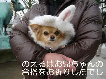 blog2012022601.jpg