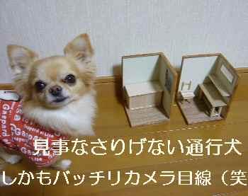 blog2012022606.jpg