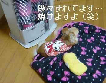 blog2012022803.jpg