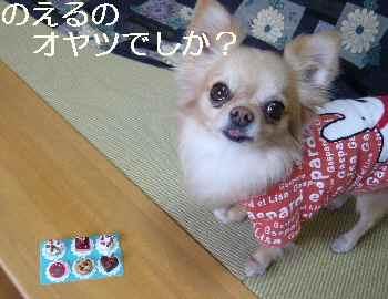 blog2012040202.jpg