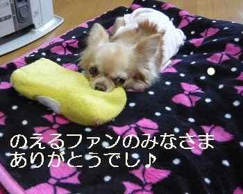 blog2012040501.jpg