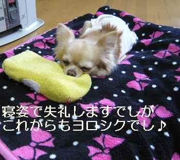 blog2012040502.jpg