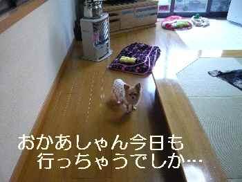 blog2012040801.jpg