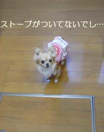 blog2012041801.jpg
