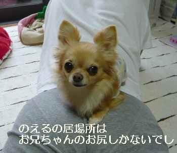 blog2012042403.jpg