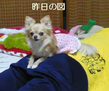 blog2012042901.jpg
