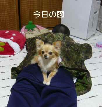 blog2012042902.jpg