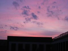 夕焼け・8時・2008、0910