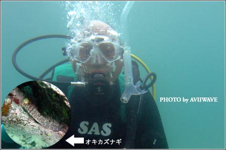 こんな日でも水中は最高☆01