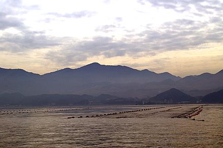 海苔網と柏原山