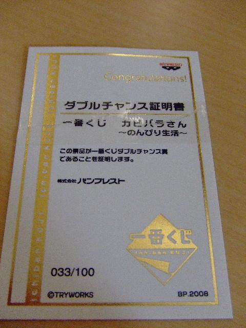 2008_1015200807180028.jpg