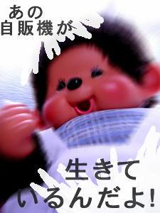 09-4-25-ji022.jpg
