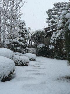 雪景色 坪庭