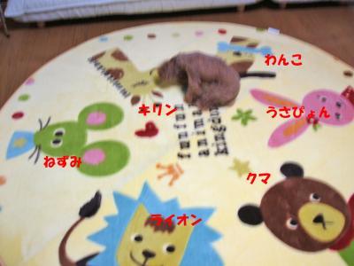 090603_convert_20080907020449.jpg