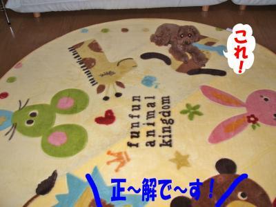 090605_convert_20080907020520.jpg