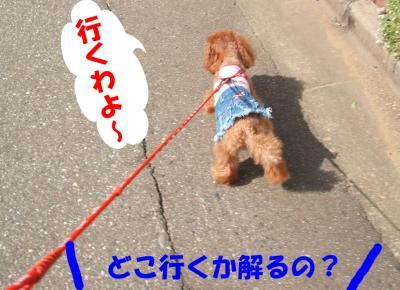 091003_convert_20080910213046.jpg