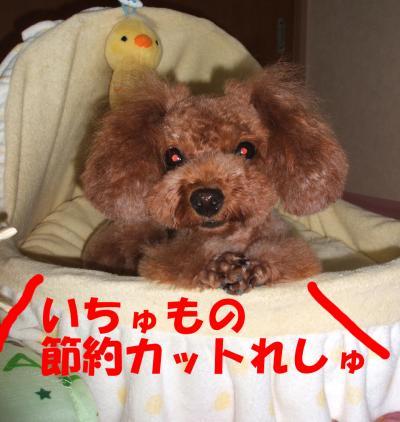 091704_convert_20080917233402.jpg