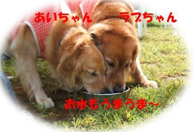0923012_convert_20080925145733.jpg