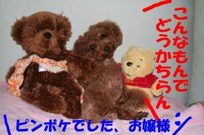 100620_convert_20081006175850.jpg