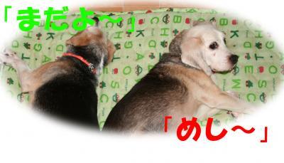 102301_convert_20081024032901.jpg