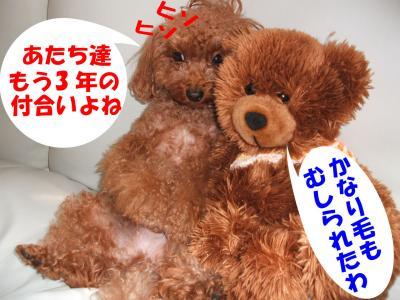 1111_convert_20080912010352.jpg