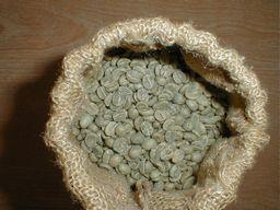 キリマンジェロの生豆