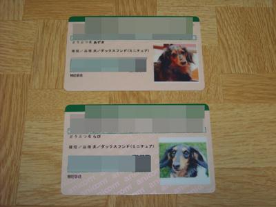 DSCN000720081205JPG.jpg