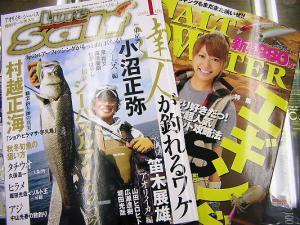 月刊誌SW