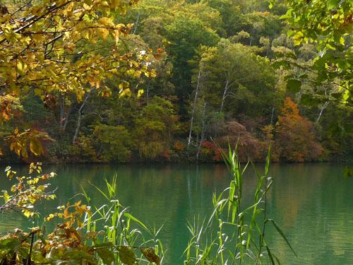 志賀高原・丸池