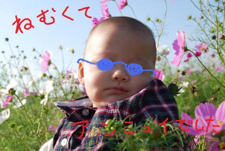 ko_20081010090741.jpg