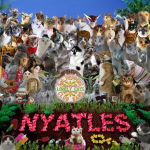 NYATLES大