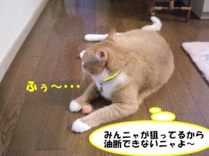 ふぅ~ココ