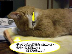 ①寝るココ