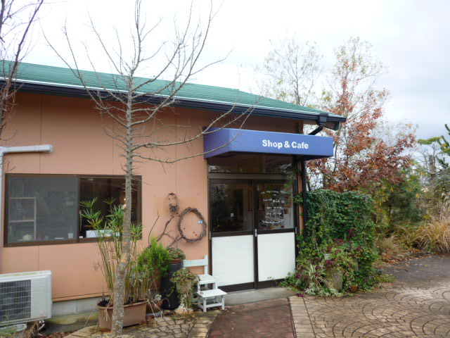 Fruit cafe NiJi2