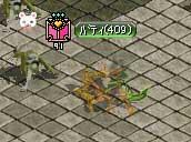 ランク3紋章