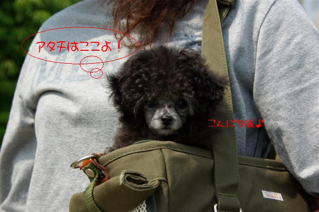 2008.5.17ロッタ1日目 068 (Small)