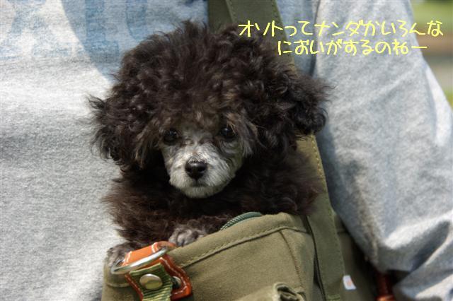 2008.5.17ロッタ1日目 063 (Small)