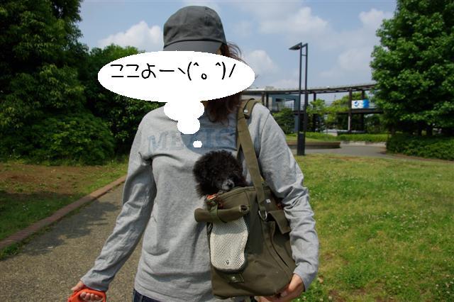 2008.5.17ロッタ1日目 066 (Small)